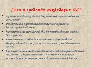 Силы и средства ликвидации ЧС1 учреждения и формирования Всероссийской службы