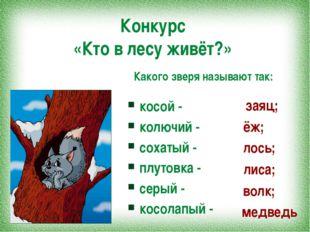 Конкурс «Кто в лесу живёт?» косой - колючий - сохатый - плутовка - серый - ко