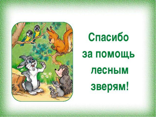 Спасибо за помощь лесным зверям!