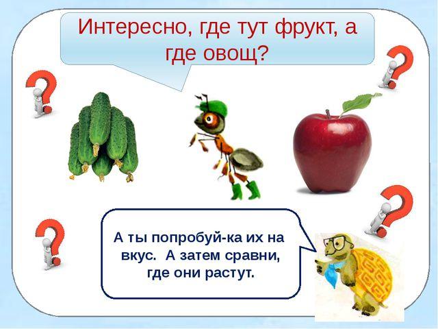Интересно, где тут фрукт, а где овощ? А ты попробуй-ка их на вкус. А затем с...