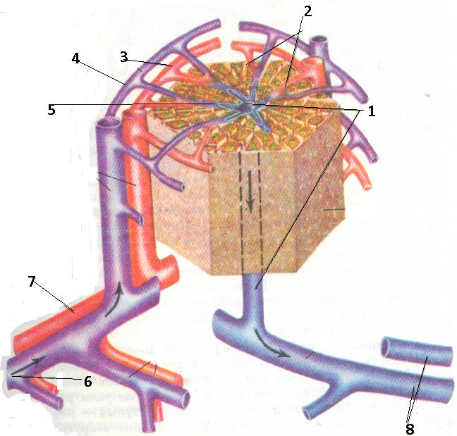 Image2 (3).bmp