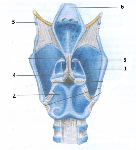 Image7 (3).bmp