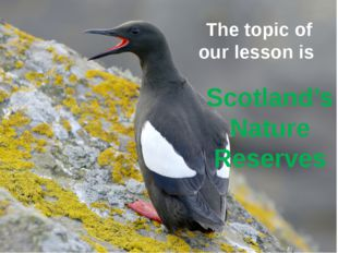 The topic of our lesson is Scotland's Nature Reserves