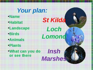 Your plan: Name Habitat Landscape Birds Animals Plants What can you do or se