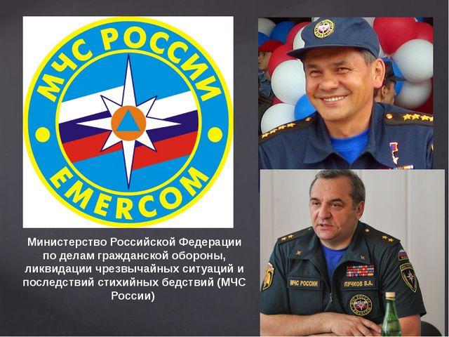 Министерство Российской Федерации по делам гражданской обороны, ликвидации чр...