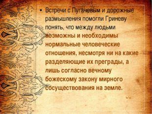 Встречи с Пугачевым и дорожные размышления помогли Гриневу понять, что между