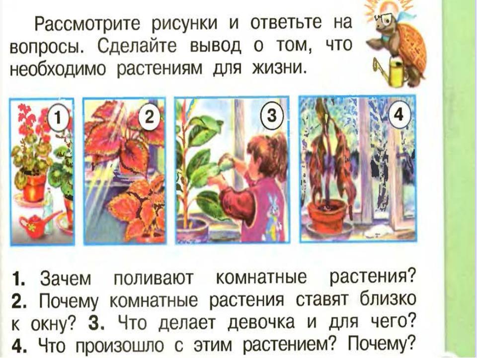 Белозёрова Татьяна