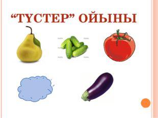 """""""ТҮСТЕР"""" ОЙЫНЫ"""