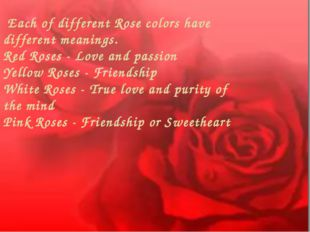 Each of different Rose colors have different meanings. Red Roses - Love and