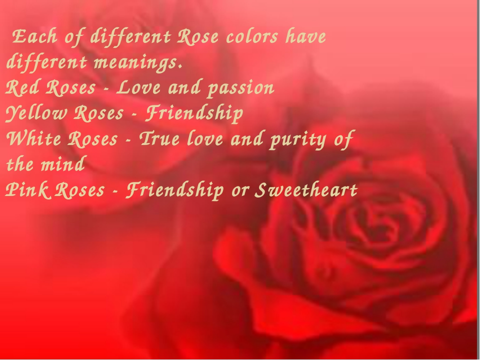 Each of different Rose colors have different meanings. Red Roses - Love and...