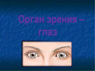 Орган зрения – глаз