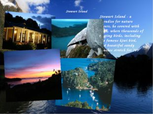 Stewart Island Stewart Island - a paradise for nature lovers, he covered with