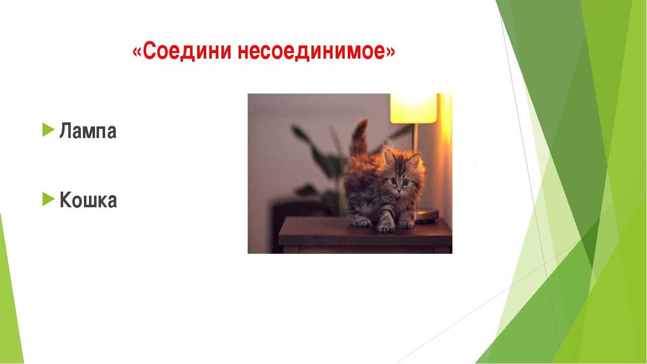 «Соедини несоединимое» Лампа Кошка
