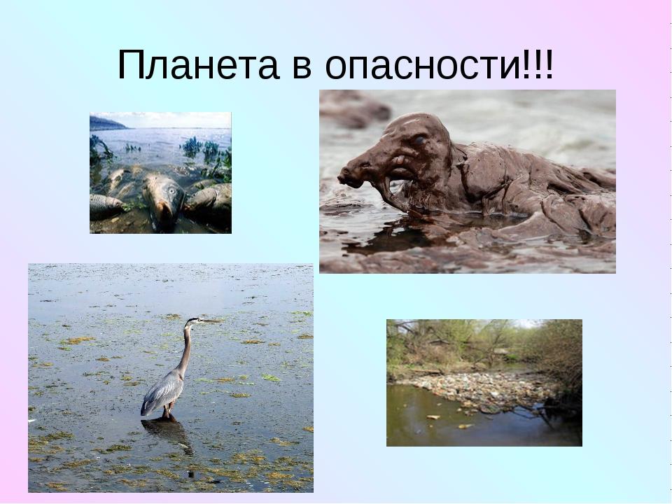 Планета в опасности!!!