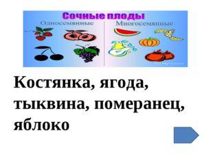 Костянка, ягода, тыквина, померанец, яблоко