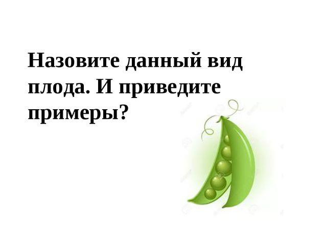 Назовите данный вид плода. И приведите примеры?