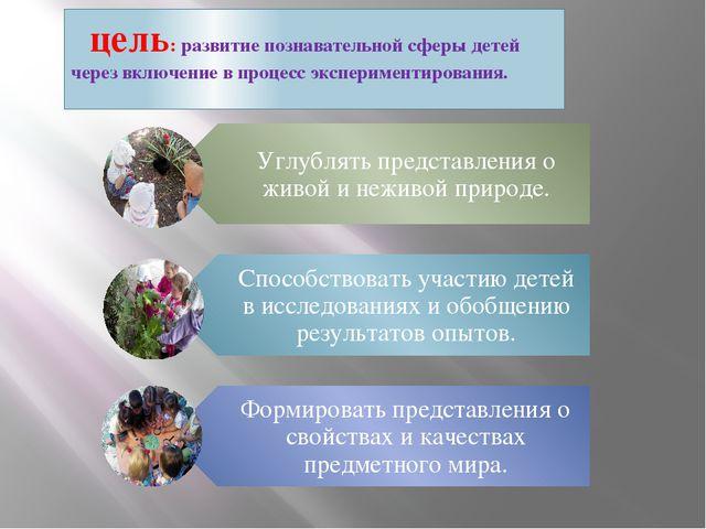 цель: развитие познавательной сферы детей через включение в процесс эксперим...