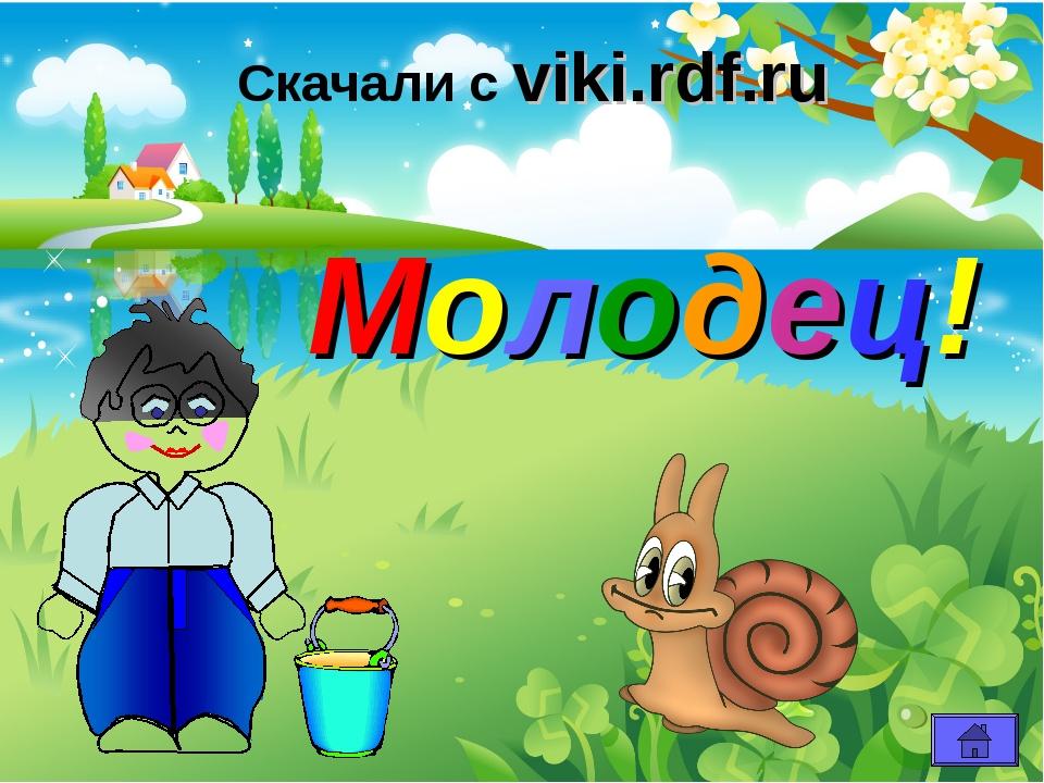Молодец! Скачали с viki.rdf.ru