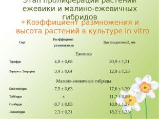 Этап пролиферации растений ежевики и малино-ежевичных гибридов Коэффициент ра