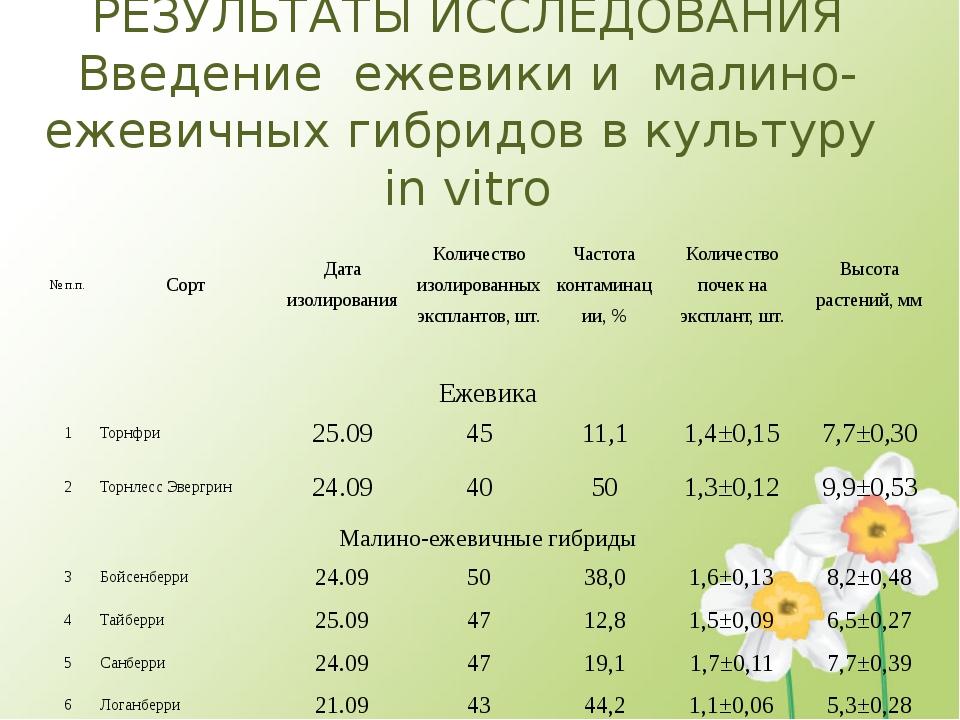 РЕЗУЛЬТАТЫ ИССЛЕДОВАНИЯ Введение ежевики и малино-ежевичных гибридов в культ...