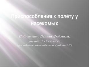 Приспособления к полёту у насекомых Подготовила Булина Людмила, ученица 7 «А»
