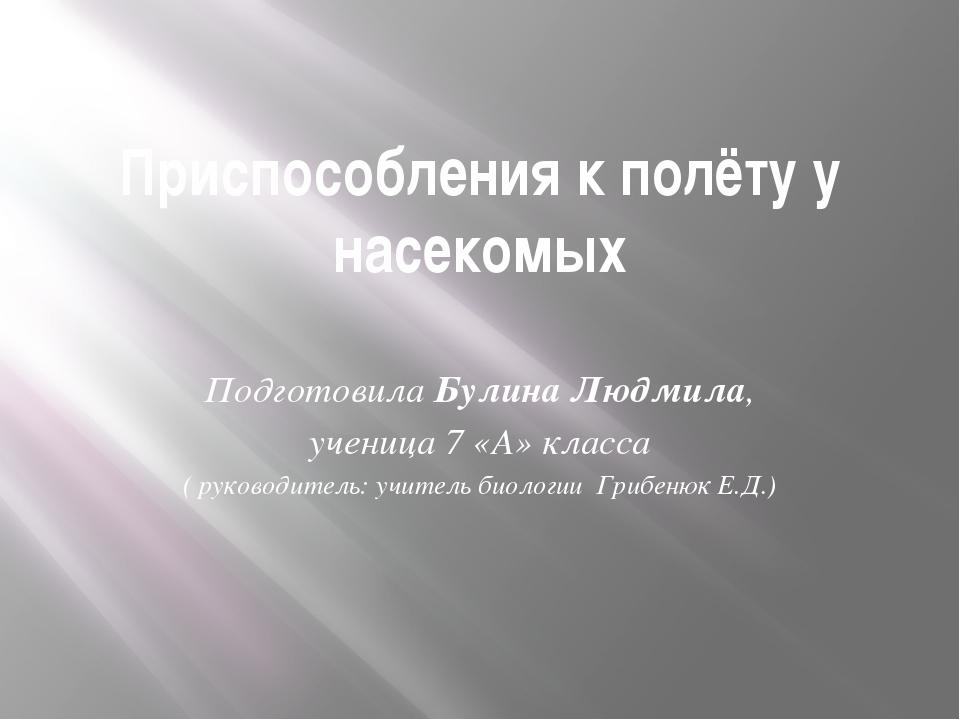 Приспособления к полёту у насекомых Подготовила Булина Людмила, ученица 7 «А»...