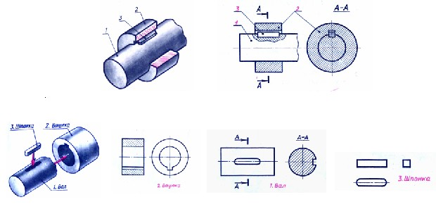 http://pedagogu.ucoz.ru/555555.jpg