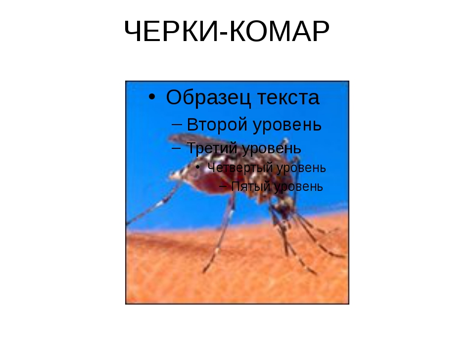 ЧЕРКИ-КОМАР