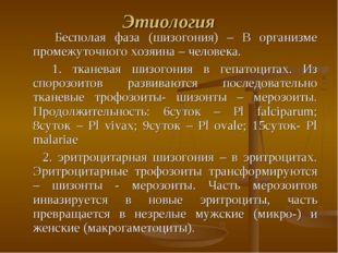 Этиология Бесполая фаза (шизогония) – В организме промежуточного хозяина – че