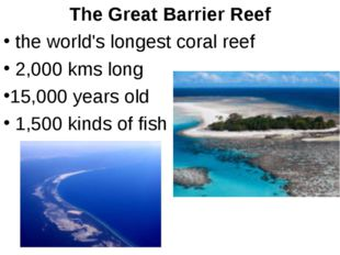 The Great Barrier Reef the world's longest coral reef 2,000 kms long 15,000 y