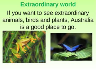 Extraordinary world If you want to see extraordinary animals, birds and plant