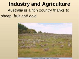Industry and Agriculture Australia is a rich country thanks to sheep, fruit a