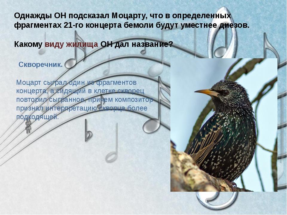 Однажды ОН подсказал Моцарту, что в определенных фрагментах 21-го концерта бе...