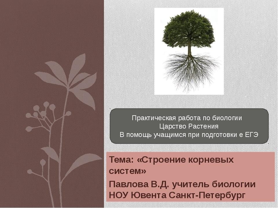 Тема: «Строение корневых систем» Павлова В.Д. учитель биологии НОУ Ювента Сан...