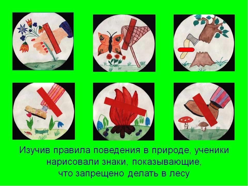 http://fs00.infourok.ru/images/doc/148/171953/img15.jpg