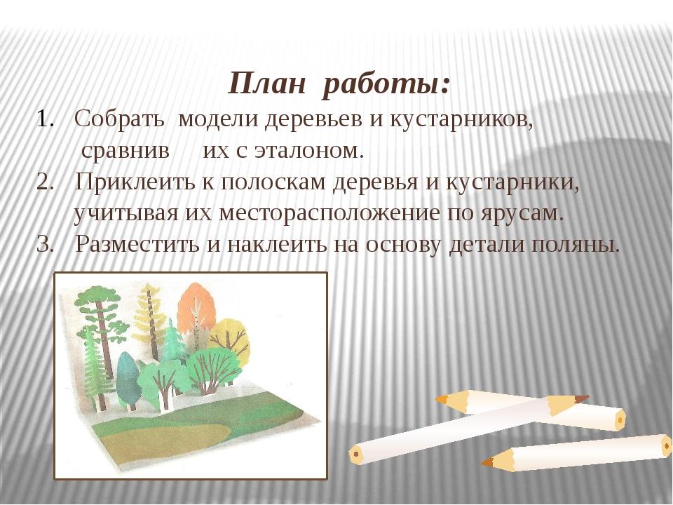План работы: Собрать модели деревьев и кустарников, сравнив их с эталоном. 2....