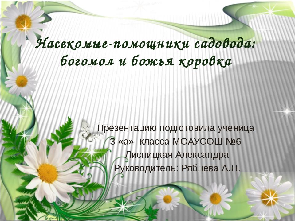 Насекомые-помощники садовода: богомол и божья коровка Презентацию подготовила...