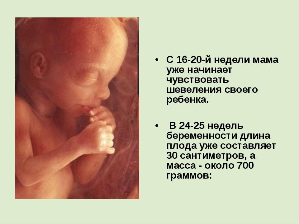 С 16-20-й недели мама уже начинает чувствовать шевеления своего ребенка. В 24...
