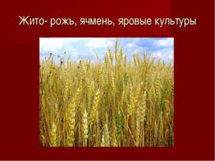 Жито- рожь, ячмень, яровые культуры