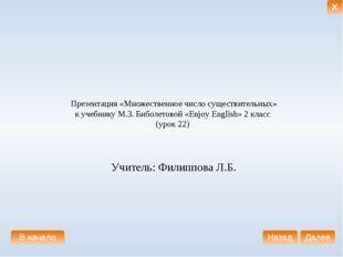 Презентация «Множественное число существительных» к учебнику М.З. Биболетово