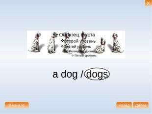 a dog / dogs В начало Далее Назад X