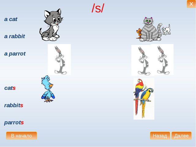 /s/ a cat a rabbit a parrot cats rabbits parrots В начало Далее Назад X