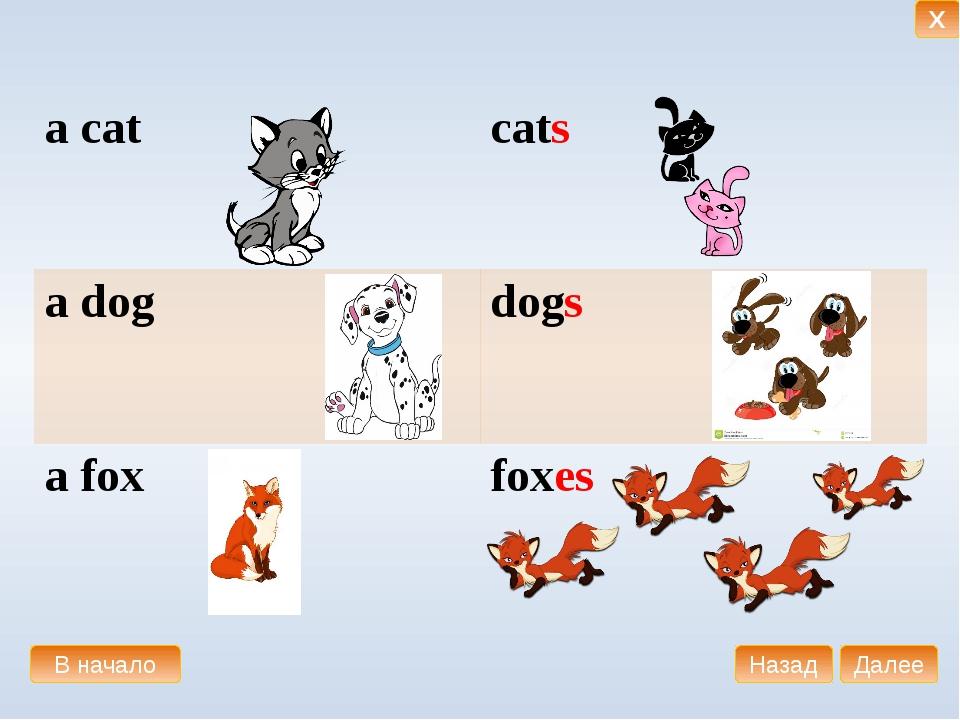 аcat сats аdog dogs аfox foxes В начало Далее Назад X
