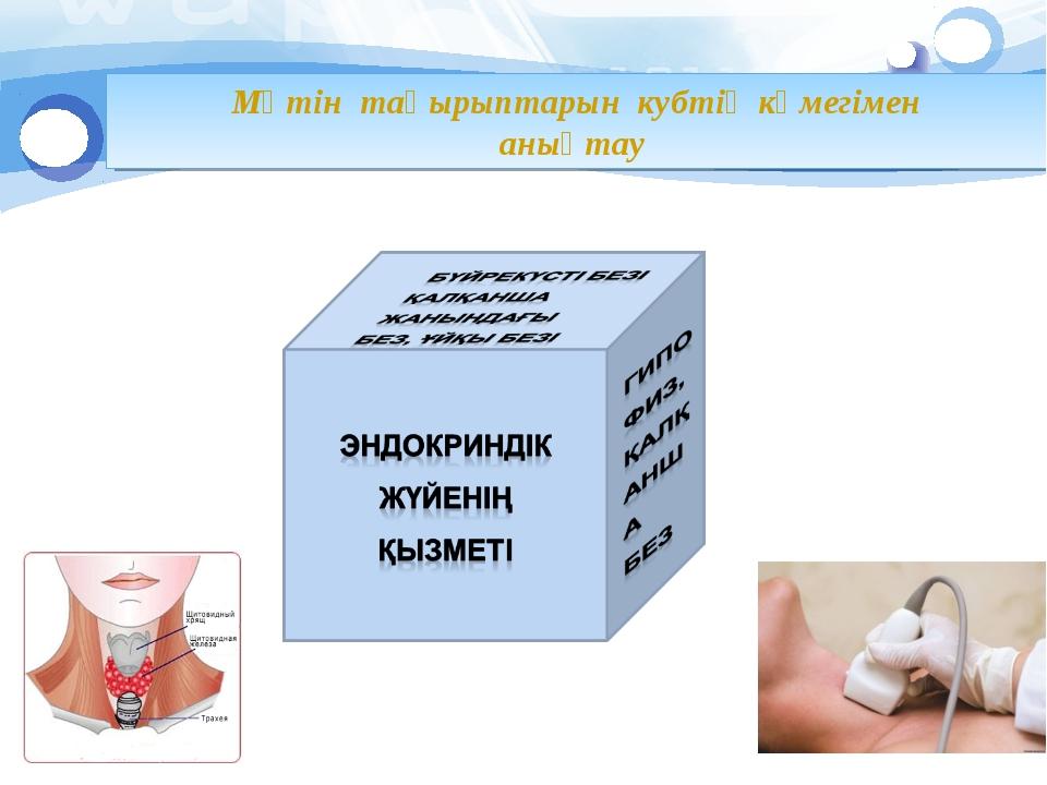Мәтін тақырыптарын кубтің көмегімен анықтау