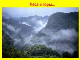 Леса и горы…