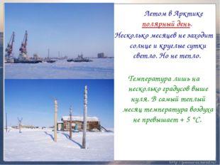 Летом в Арктике полярный день. Несколько месяцев не заходит солнце и круглые