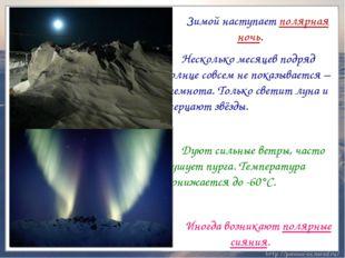 Зимой наступает полярная ночь. Несколько месяцев подряд солнце совсем не п