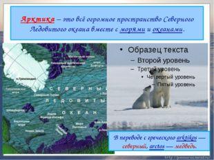Арктика – это всё огромное пространство Северного Ледовитого океана вместе с