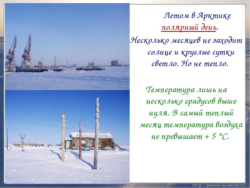 Летом в Арктике полярный день. Несколько месяцев не заходит солнце и круглые...