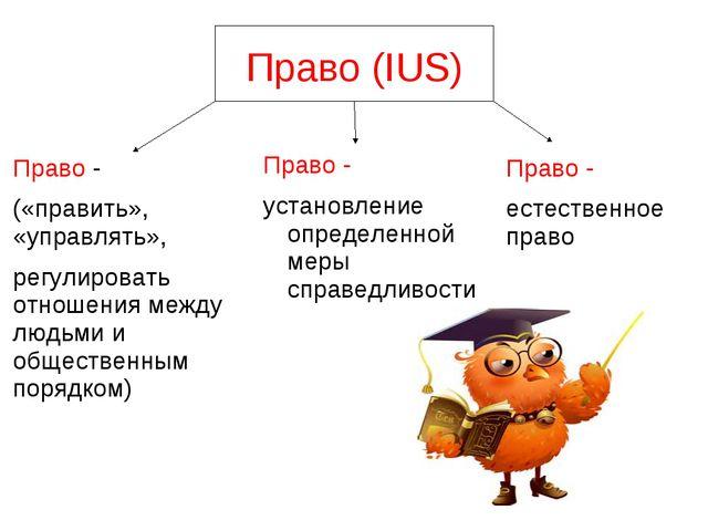 Конспект урока по обществознанию 9 класс право его роль в жизни общества и государства
